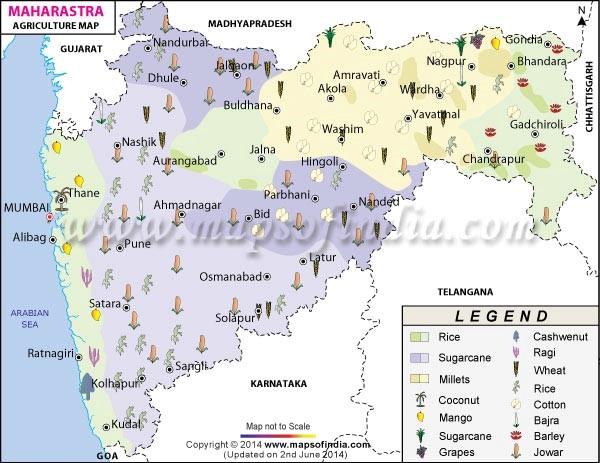 Maharashtra Agriculture Map