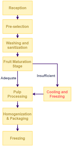 Fruit Pulp Production