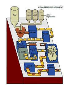 Food Buddies - Bread Processing Method