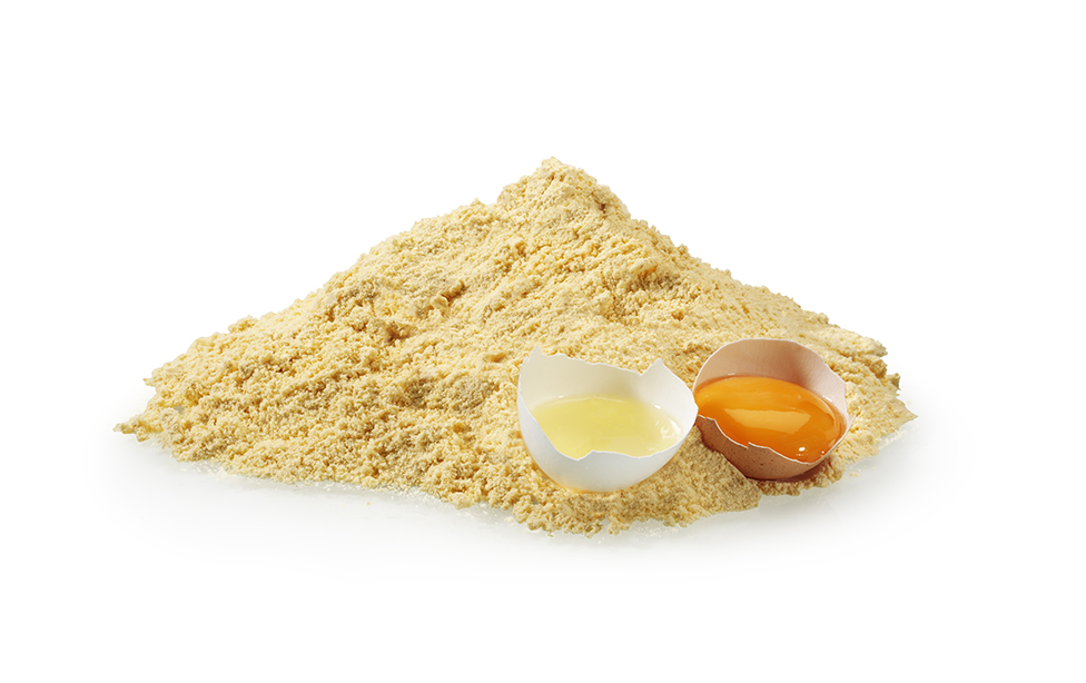 Egg Powder Processing