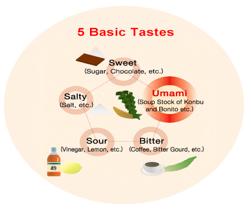 basic taste
